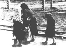 Auschwitz-Birkenau: vers la chambre à gaz… Grand-mère hongroise et ses petits enfants