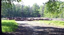 Auschwitz-Birkenau: les ruines du KV
