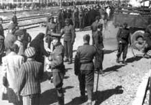 Le Hauptscharführer Thilo (médecin militaire) lors d'une sélection. Ce SS «bon ton» trouvera la bonne formule pour Birkenau: l'«anus mundi», l'anus du monde