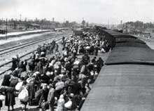 Auschwitz-Birkenau: arrivée d'un convoi de Juifs hongrois le 26 mai 1944. Au fond, les cheminées des KII et KIII