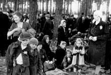Auschwitz-Birkenau: l'attente de la mort dans le Birkenwald