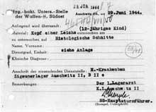 Auschwitz-Birkenau: étiquette macabre signée Mengele: «tête d'un cadavre – enfant de 12 ans – coupe histologique – camps des Tziganes – AuschwitzII»