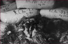 Auschwitz-Birkenau: le Kanada: cheveux de femmes