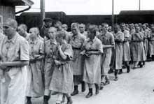 Auschwitz Birkenau: Mort différée pour ces femmes rasées: elles on été sélectionnées pour le travail