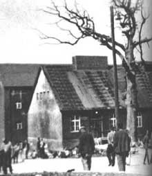 Buchenwald: au centre du camp, le «Chène de Goethe»