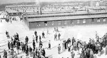 Buchenwald : le camp vient d'être libéré