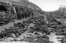 Mauthausen: la libération du camp parmi des centaines de cadavres..