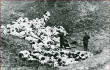 14 octobre 1942, massacre des juifs du ghetto de Mizocz. Un policier allemand exécute une femme juive touchée mais encore vivante