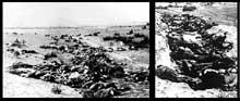 Pinsk: massacres du 4 août 1941