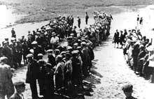 Wlodawa: octobre 1942: les Juifs cachés dans la forêt proche se rendent et sont enfermés dans un ghetto
