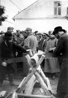 Zwolen: Juifs contraints aux travaux forcés, 17 septembre 1939