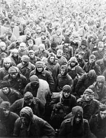 Février 1943 : prisonniers allemands après Stalingrad