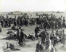 Prisonniers italiens à Sidi Barrani
