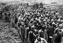 Prisonnier soviétiques dirigés vers le camp de Gomel.Juillet 1941