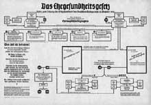 Affiche expliquant la loi sur le mariage tel que le conçoit l'idéologie nazie, dans le sens de l'hygiène raciale basée sur la biologie