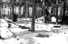 Meseritz-Obrawalde: le cimetière