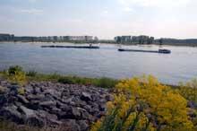Le Rhin aux Pays Bas